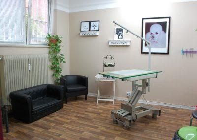 Raum Hundepflege